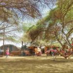 Shkedi's Camplodge: a true desert wonder!